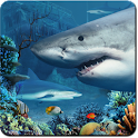 Shark Reef Live Wallpaper logo