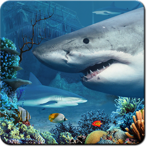 Shark Reef Live Wallpaper 個人化 App LOGO-APP試玩