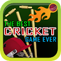The Best Cricket Game Ever icon