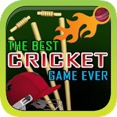 The Best Cricket Game Ever