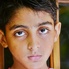 My SON by Madhu Payyan Vellatinkara - Babies & Children Child Portraits ( kids, baby, handsome, portrait, eyes,  )
