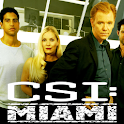 CSI Miami Game