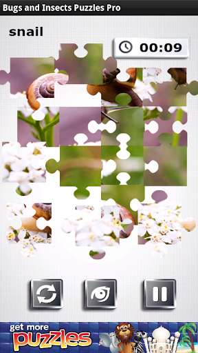 Bugs Insects Puzzles Pro