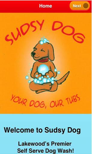 Sudsy Dog