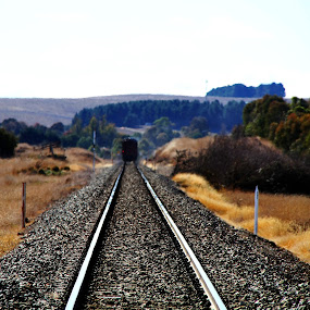 Shiny tracks by Ned Kelly - Transportation Railway Tracks ( diesel, rails, railway, train, tracks, land, device, transportation )