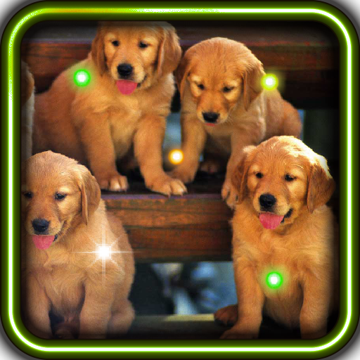 Puppies Voice live wallpaper 個人化 App LOGO-APP試玩