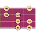 DG Mandolin Scales icon