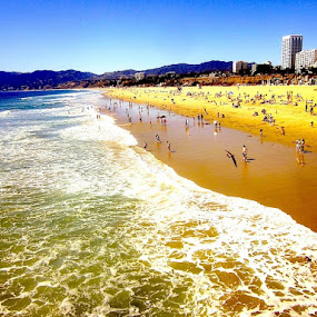 Santa Monica from the Pier by Ronnie Caplan - Landscapes Beaches ( water, sand, waves, santa monica, pacific, horizon, ocean, beach, people, swimming, mountains, sky, bathers, sunny, hot, highrises, , crowd, humanity, society, Urban, City, Lifestyle, Beach, sunset, blue, ocean.  )
