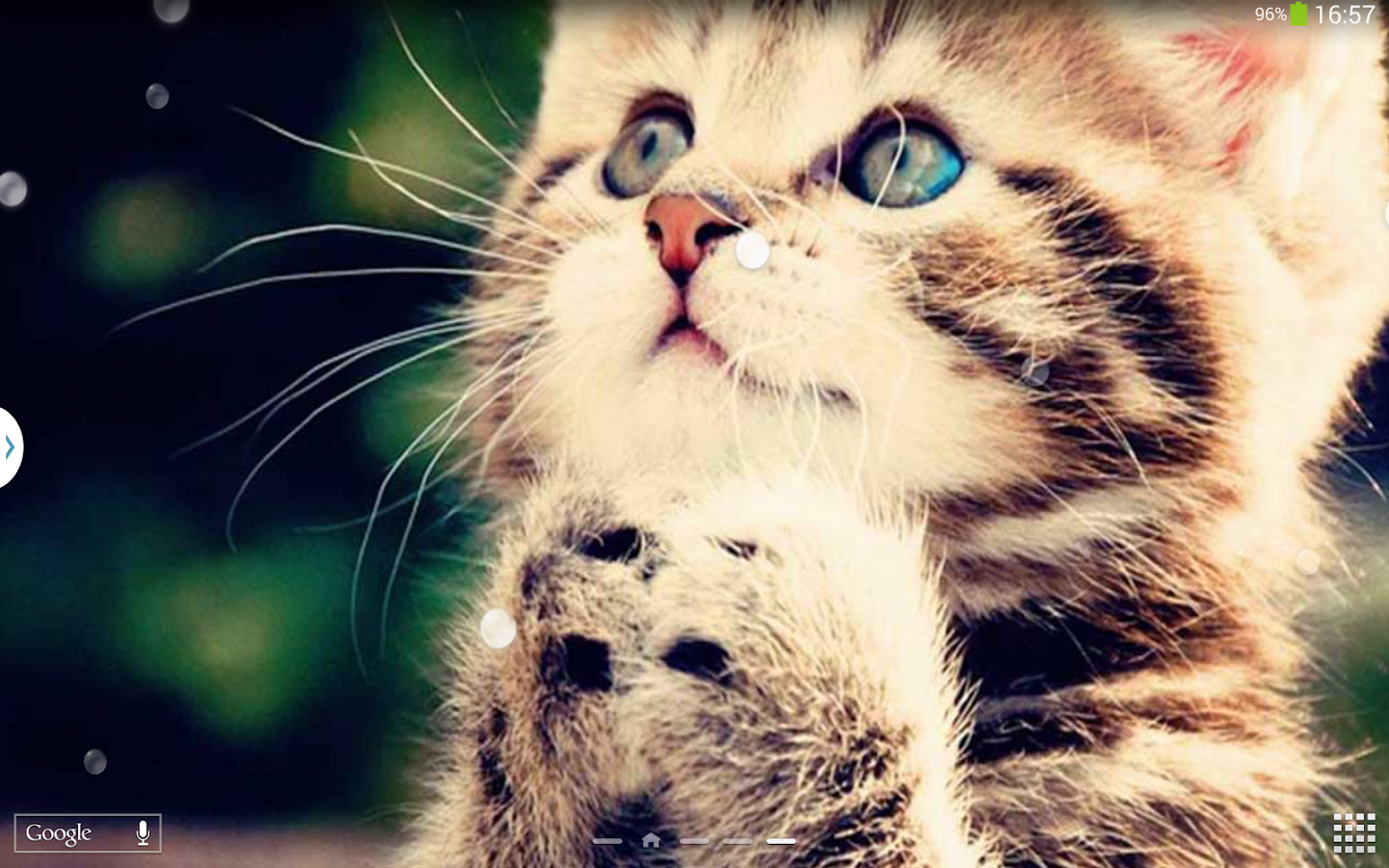 Top Fonds d'écran Chats - Chatons - Applications Android sur Google Play WN58