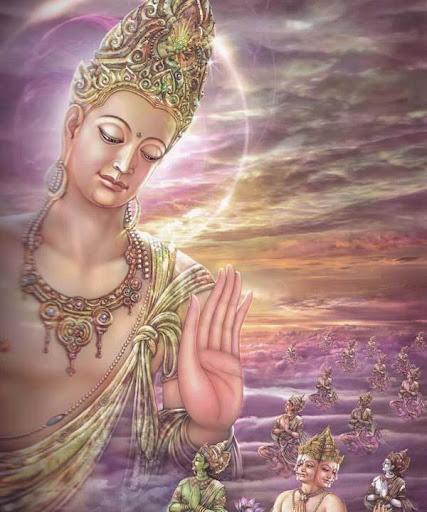THE LIFE OF BUDDHA PREMIUM