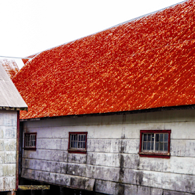 Old Cannery  by Alex Barrow - Buildings & Architecture Public & Historical ( canada, red, white, pwc87,  )