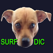 Surf Dictionary
