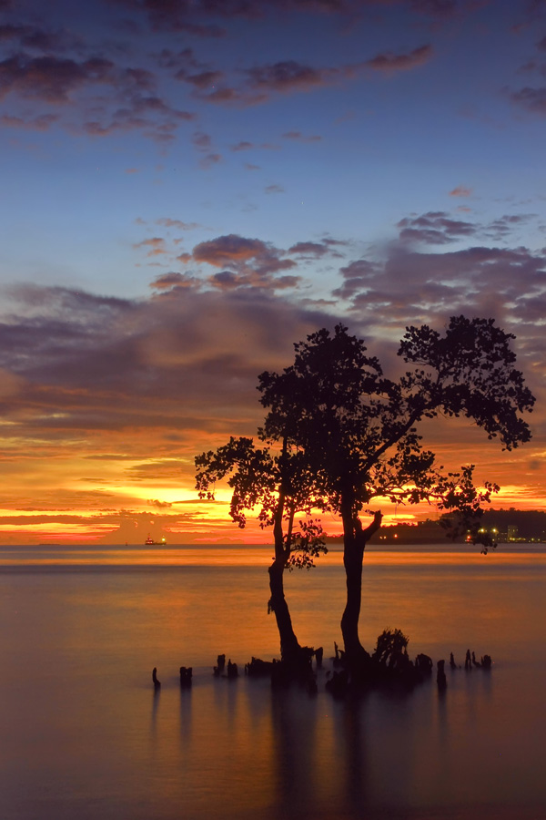 bakau by Irwan S - Landscapes Sunsets & Sunrises