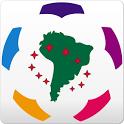 Libertadores 2014 icon