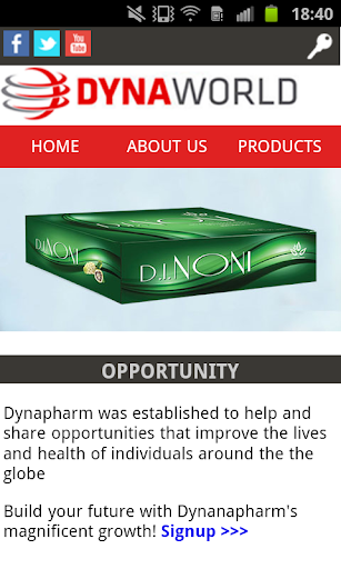 DynaWorld