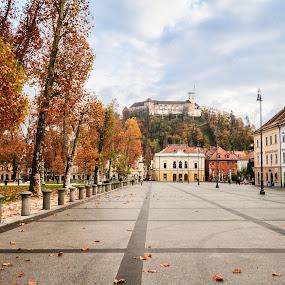 Kongresni trg, Ljubljana by Jernej Lah - Buildings & Architecture Public & Historical