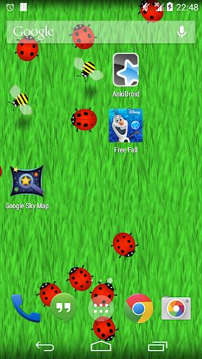 Ladybird Live Wallpaper