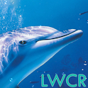free dolphin live wallpaper icon