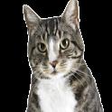 Meow Music logo