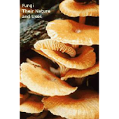Fungi - Their Nature and Uses