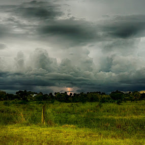 Nightmare over Clewiston by Liza Chevres - Landscapes Weather ( clouds, lightning, florida, a6000, storm,  )
