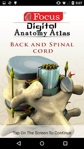 BACK AND SPINAL CORD - ATLAS