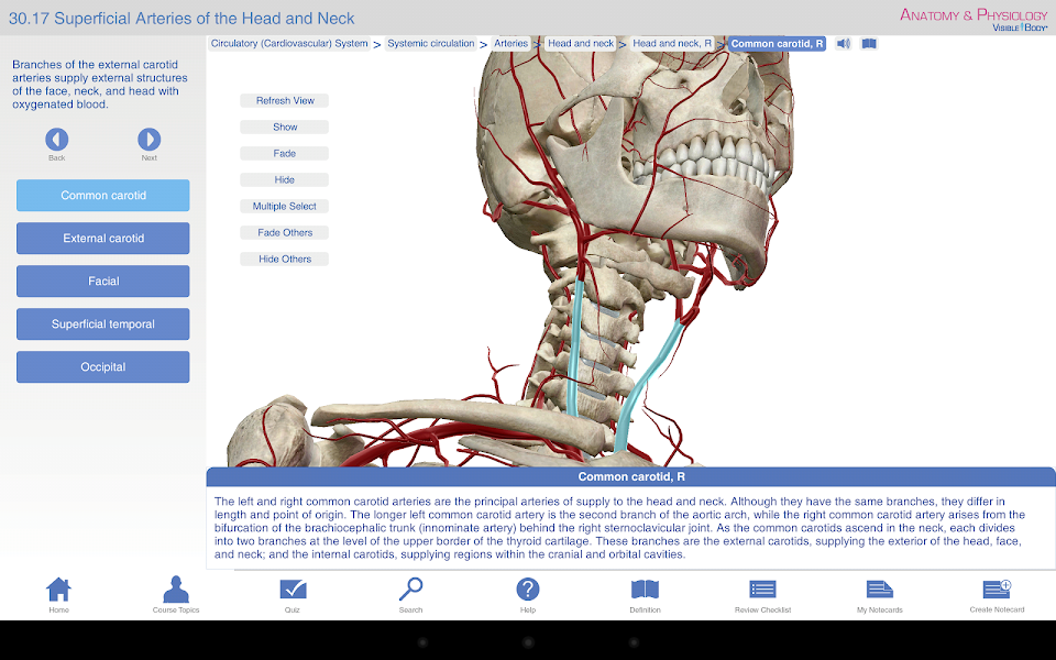 Anatomy & Physiology - anatomy physiology Android Medical App