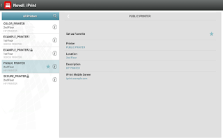 Screenshot of Novell iPrint