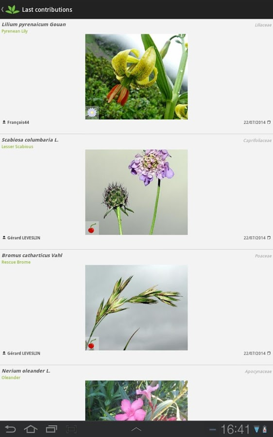 PlantNet Plant Identification- screenshot