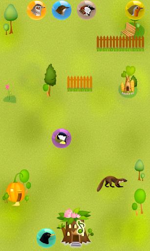 玩街機App|Guess the bird?免費|APP試玩