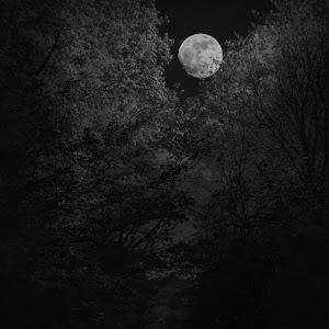 luna la ipotesti alb negru.jpg