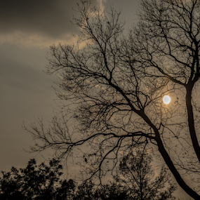 by YSKAy ClickZ - Landscapes Sunsets & Sunrises