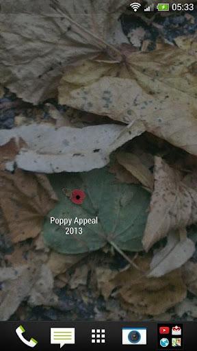 Poppy Appeal 2013