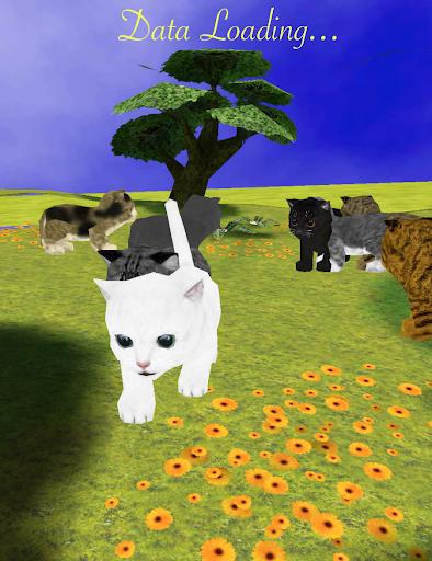 Cat Stroll
