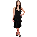 Ashley Greene widgets logo