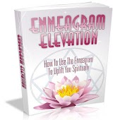 Enneagram Elevation Guide