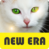 Animal - NEW ERA