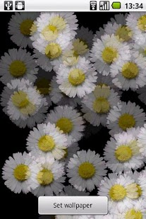 White Flower Live wallpaper- screenshot thumbnail
