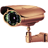 Viewer for Heden IP cameras