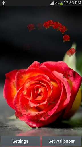 Rose HD Live Wallpaper