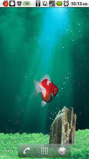 水族館金魚即時壁纸