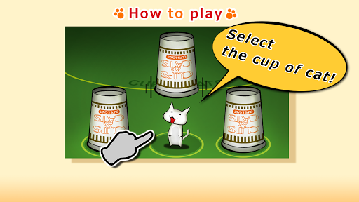 CUPS CATS