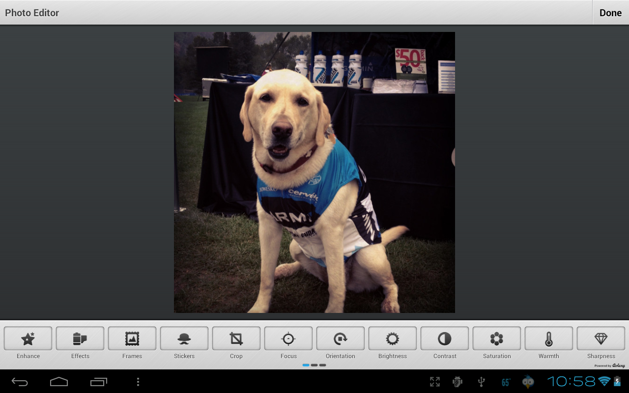 Photo Effects Plugin by Aviary screenshot #8