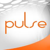 Pulse Auto Dealer