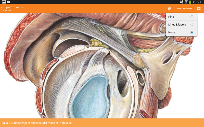 Sobotta Anatomy Screenshot 13