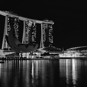 Marina Bay by Paulo Jorge - Buildings & Architecture Office Buildings & Hotels ( singapore )