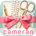 cameran collage-pic photo edit icon