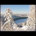 Discover Finland logo