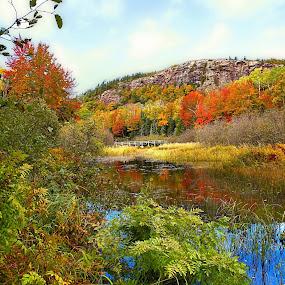 Porcupine mountain state park Upper Peninsula  Michigan USA  by Bill Redmond - Landscapes Travel ( michigan, mountains, nature, fall colors, fall, usa )