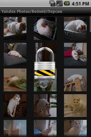 Yandex Photo Albums Key- screenshot